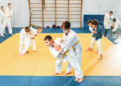 projektbild kinderkampfsportschule 400x284 - Sportschulen & Akademien