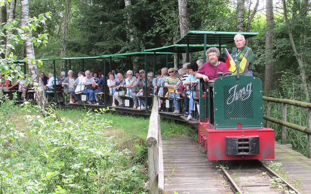 Seniorenclub bei der Fahrt mit einer Eisenbahn