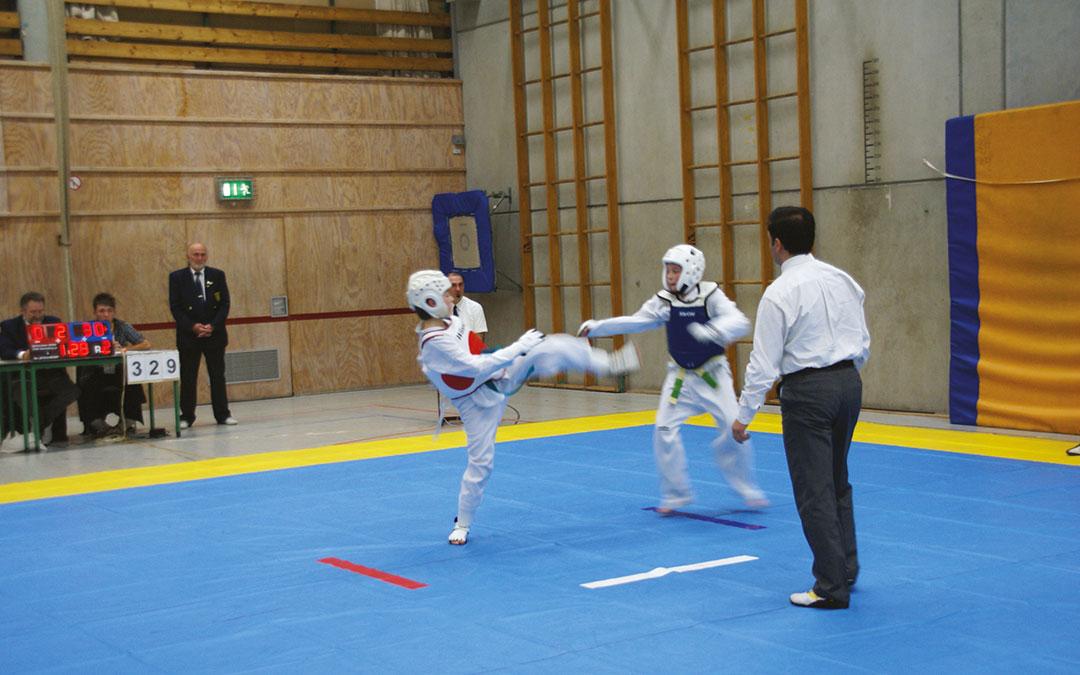taekwondo - Taekwondo