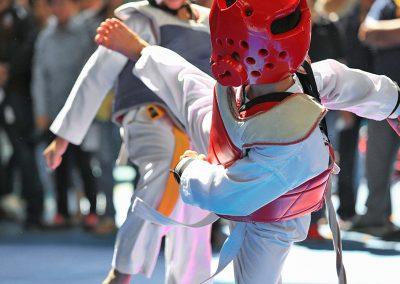 projektbild taekwondo 400x284 - Abteilungen