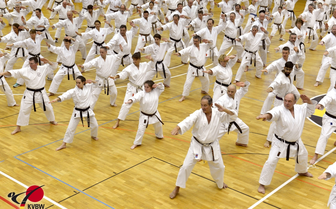 "MTV Ludwigsburg empfängt ""Karatefamilie"""