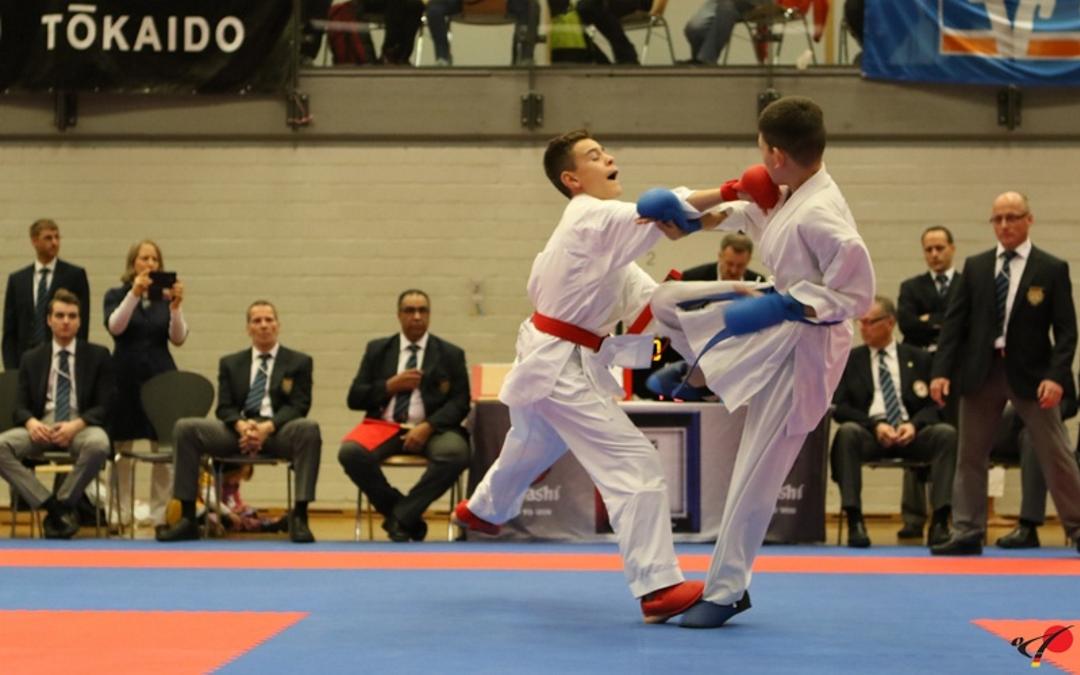 Kumite 3 - Karate